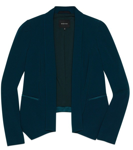 Aritzia_Dominick_Jacket_Everest