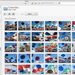 Organized Data: How to name files, folders and photographs