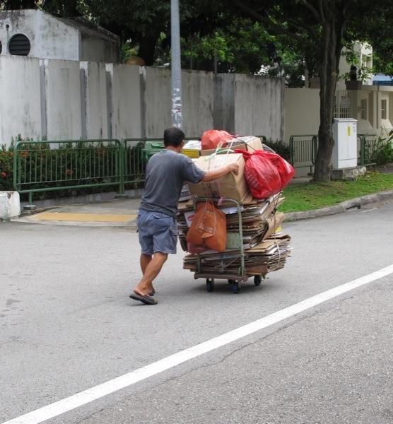 Photograph-Singapore-Recycling-Cardboard-Working-Man-Older-Career-Job