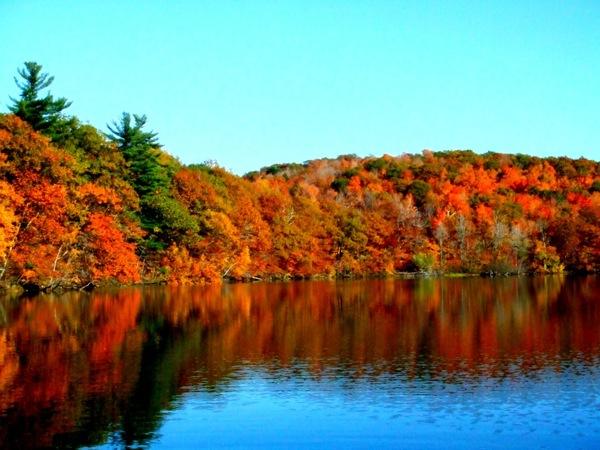 Photograph-Travel-Montreal-Quebec-Canada-Park-Autumn-Lake
