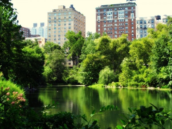Photograph-Travel-NYC-Central-Park-New-York-City-USA-2