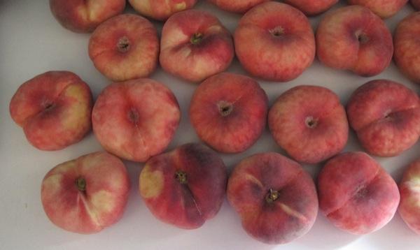 Photograph_Travel-Spain-Madrid-Peaches-Donut-Fruit-Vegetable-Food