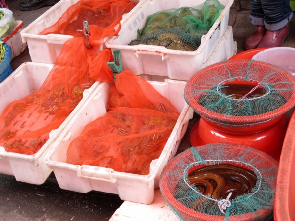 Shanghai-China-Photograph-Street-Market-Seafood