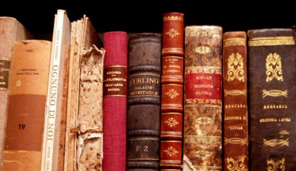 Stock-Books-Read-Study-Education-College.png
