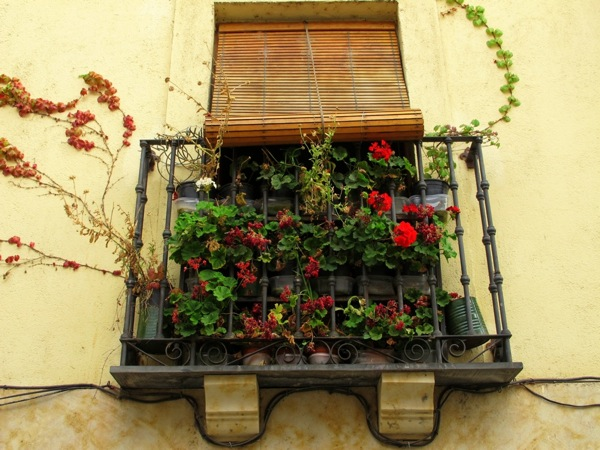 Travel-Photograph-Lisbon-Portugal-Europe-Flowered-Window
