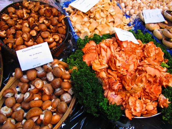 Travel-Photograph-London-England-Mushrooms-Food-Market-Covent-Garden-2
