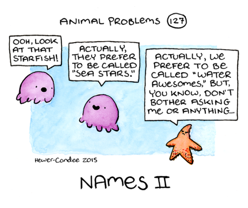 animal-problems-127-sea-stars