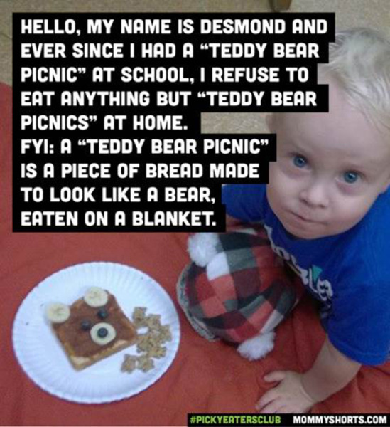 mommy-shorts-picky-eaters-teddy-bear-picnic