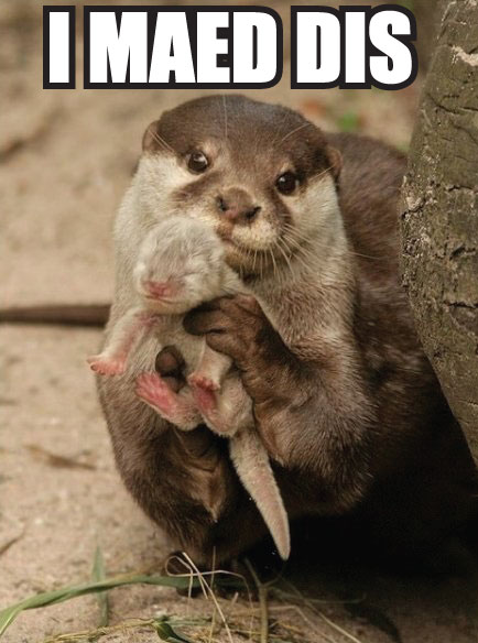 mother-otter-baby-animal-cute