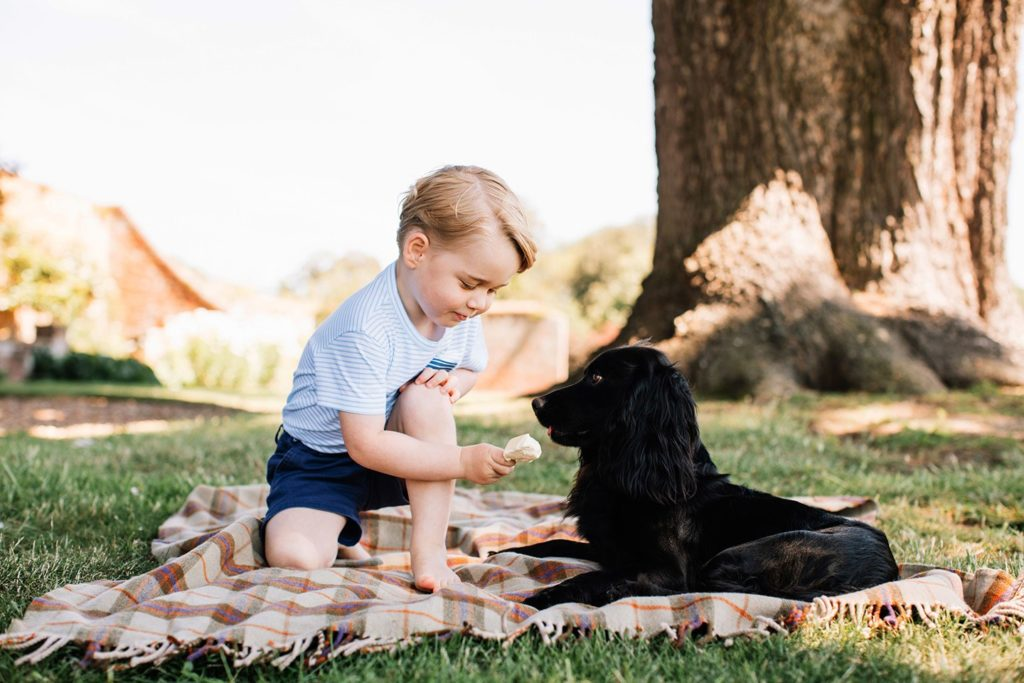 prince-george-birthday-portraits-2016