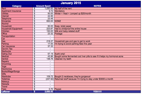 save-spend-splurge-january-2015-expenses