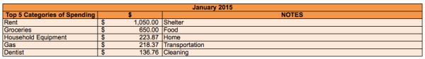 save-spend-splurge-january-2015-top-5-spending-categories
