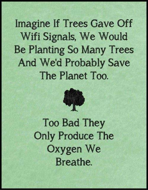 trees-wifi-signals-oxygen-earth-environment-breathe