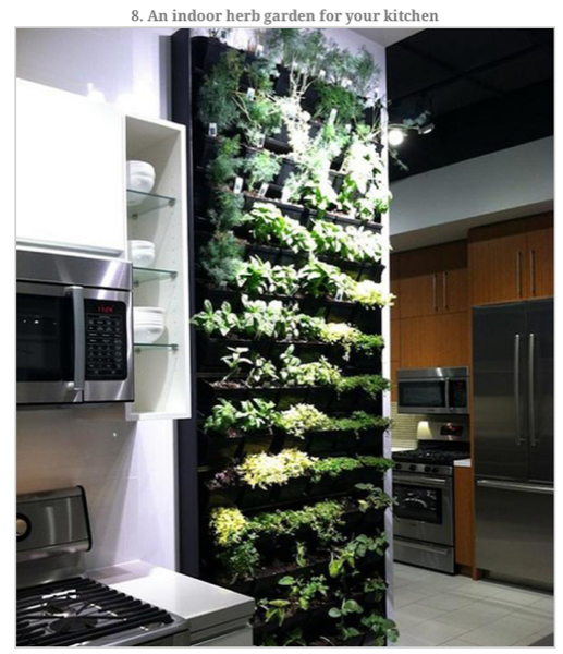 viralnova-cool-dream-home-items-herb-garden-kitchen